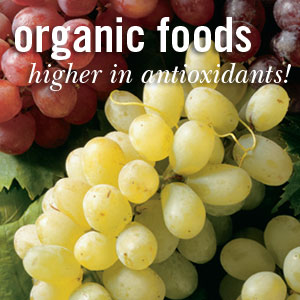 Organic Antioxidants